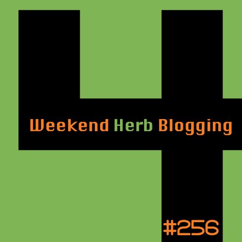 Post image for Weekend Herb Blogging #256: The Round Up