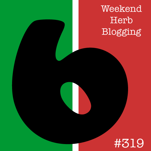 Post image for Weekend Herb Blogging 319: The Round Up